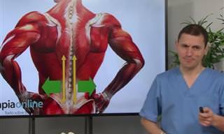 ¿Te Duele La Espalda En La Zona Lumbar? ¡Te Ayudamos!