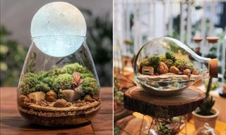 14 Bellos Terrarios De Cristal Que Contienen Mundos En Miniatura