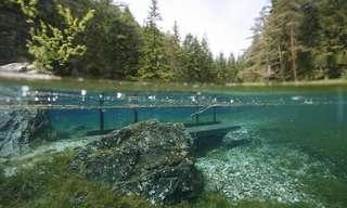 La Naturaleza Cambiante Del Lago Verde