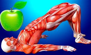 Come Una Manzana Al Día y Verás Lo Que Pasa En Tu Cuerpo