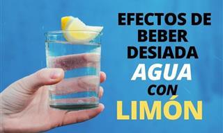 Los Peligros De Beber Demasiada Agua Con Limón