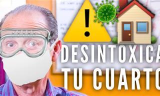 ¿Por Qué Debes Desintoxicar Tu Habitación?