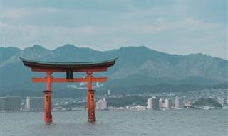 14 Maravillosas Fotografías De Japón