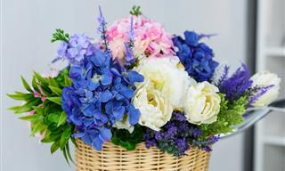¿Cuánto Sabes Del Mundo De Las Flores?
