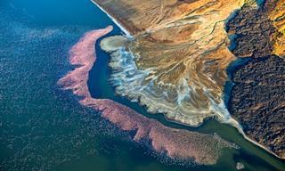 Observa El Mundo a Vista De Pájaro Con Estas Fotos De Drones