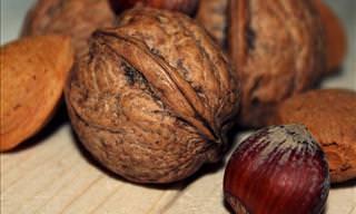 Una Guía Completa Sobre Los Frutos Secos y Sus Beneficios