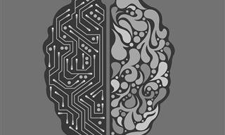 Un Test Para Probar Tu Buena Memoria y Conocimiento