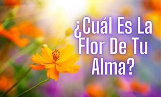 Descubre Cuál Es La Flor De Tu Alma