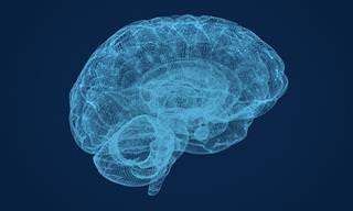 Estudio Sugiere Un Nuevo Método Para Aumentar Memoria