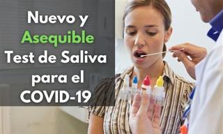 SalivaDirect: Una Técnica Más Barata Para Las Pruebas De COVID-19