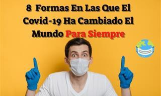 Así Es Como La Pandemia Por El Covid-19 Ha Cambiado El Mundo
