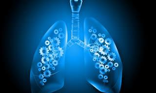 8 Síntomas Que Podrían Indicar Problemas Pulmonares