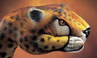 Hermoso Arte Dibujado En Manos Humanas
