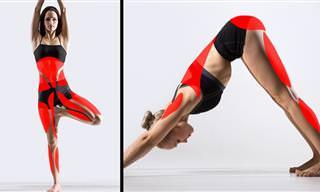 Yoga: 15 Posturas Que Pueden Cambiar Tu Cuerpo