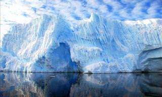 Un Impresionante Viaje a La Fría Antártida