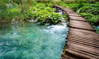 El Puente: Un Cuento Para Reflexionar