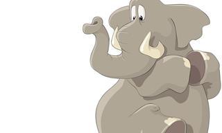 Cuento Espiritual: El Elefante y La Rata