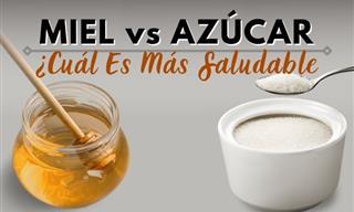 ¿Miel o Azúcar? ¿Qué Opción Es Más Saludable?