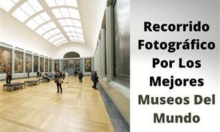 Colección Fotográfica De Los Mejores Museos Del Mundo