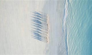 9 Fotografías Capturadas Con Aviones No Tripulados
