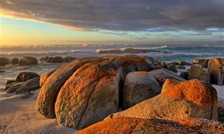 Tasmania: Una Isla Simplemente Fascinante