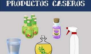 Reemplazos Caseros Para Productos Cotidianos