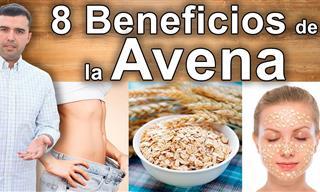 8 Beneficios y Propiedades de Comer Avena Todos Los Días