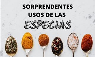 Inesperados Usos De Las Especias Fuera De La Cocina