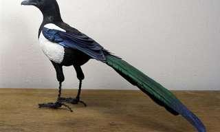 Maravillosas Aves De Papel De Zack Mclaughlin's