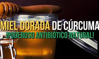 El Mejor De Los Antibióticos: Miel Dorada De Cúrcuma