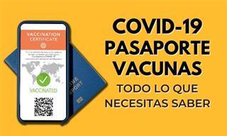 Todo Lo Que Debes Saber Sobre Los Pasaporte Covid-19