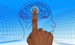 Prueba Tu Capacidad De Pensamiento Lógico