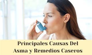 Las Principales Causas, Contraindicaciones y Remedios Para El Asma
