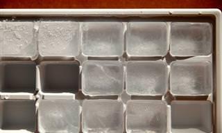 ¿Cuánto Puede Aguantar La Comida En El Congelador?