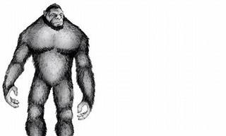 12 Fenómenos Naturales Que La Ciencia No Puede Explicar
