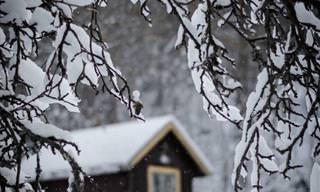 18 Fotografías Del Mágico Invierno En Suecia
