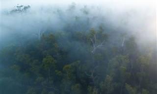 12 Fotografías De Australia En Invierno