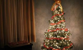 ¿Quieres Que Tu Árbol De Navidad Duré Más Tiempo? Toma Nota...