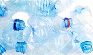 ¡Una Simple Botella Plástica Se Convierte En Tantas Cosas!