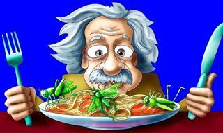 Los Raros Hábitos Cotidianos Del Genio Albert Einstein