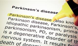 Estudio Revela Signos Moleculares De La Enfermedad De Parkinson
