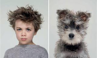 10 Fotos De Perros Parecidos a Sus Dueños