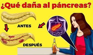 ¿Por Qué Se Produce La Pancreatitis y Cómo Evitarla?
