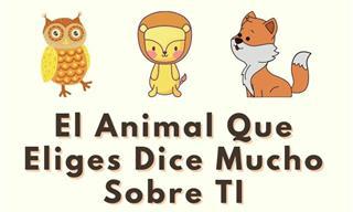 Elige Tu Animal Favorito y Descúbrete a Ti Mismo