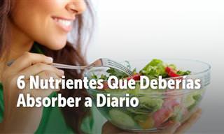 7 Nutrientes Que Tu Cuerpo Necesita Absorber