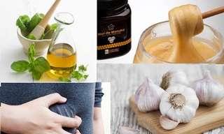 Los 5 Antibióticos Naturales Para La Indigestión