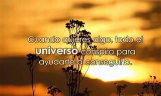 Las Bellas Palabras De Paulo Coelho Te Inspirarán