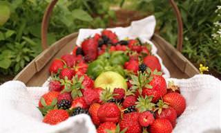10 Alimentos Para Mejorar La Circulación De Manera Natural