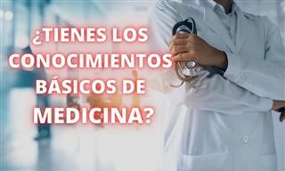 ¿Tienes Los Conocimientos Básicos De Medicina?