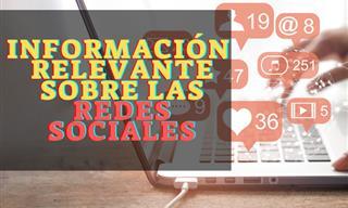 7 Artículos Con Toda La Información Sobre Las Redes Sociales